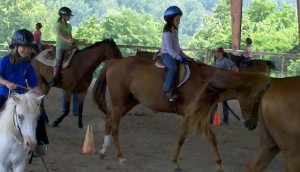 Group Horseback Riding Lessons