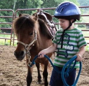 Horseback Riding Lesson for Kids