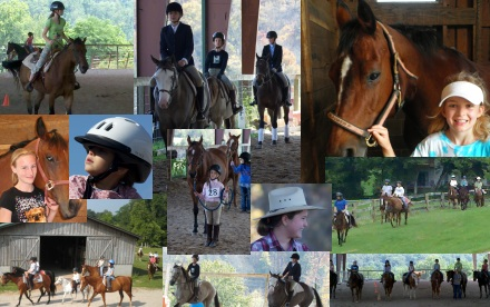 Horse Riding Lessons in Tennessee