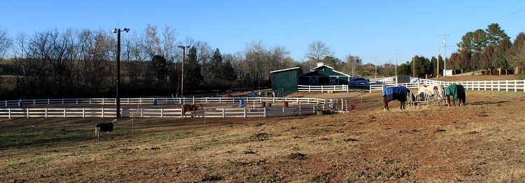 Blue Point Stables at rest, for the moment, on Thursday November 14, 2013