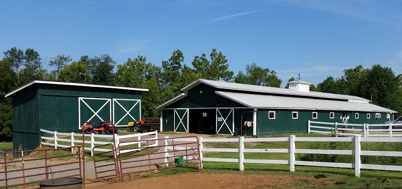 Blue Point Stables